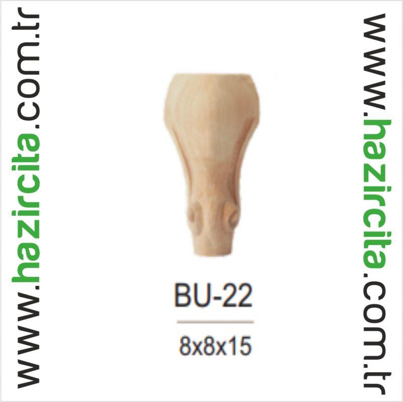 BU 22 1