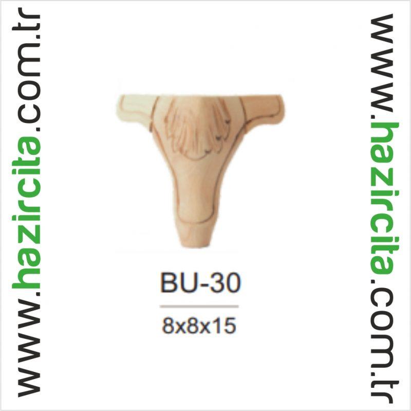 BU 30 1